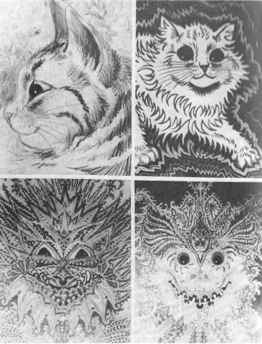 Cat Drawings 2a